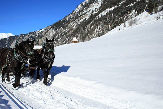 Winterurlaub Österreich Großarltal - collected by Katja