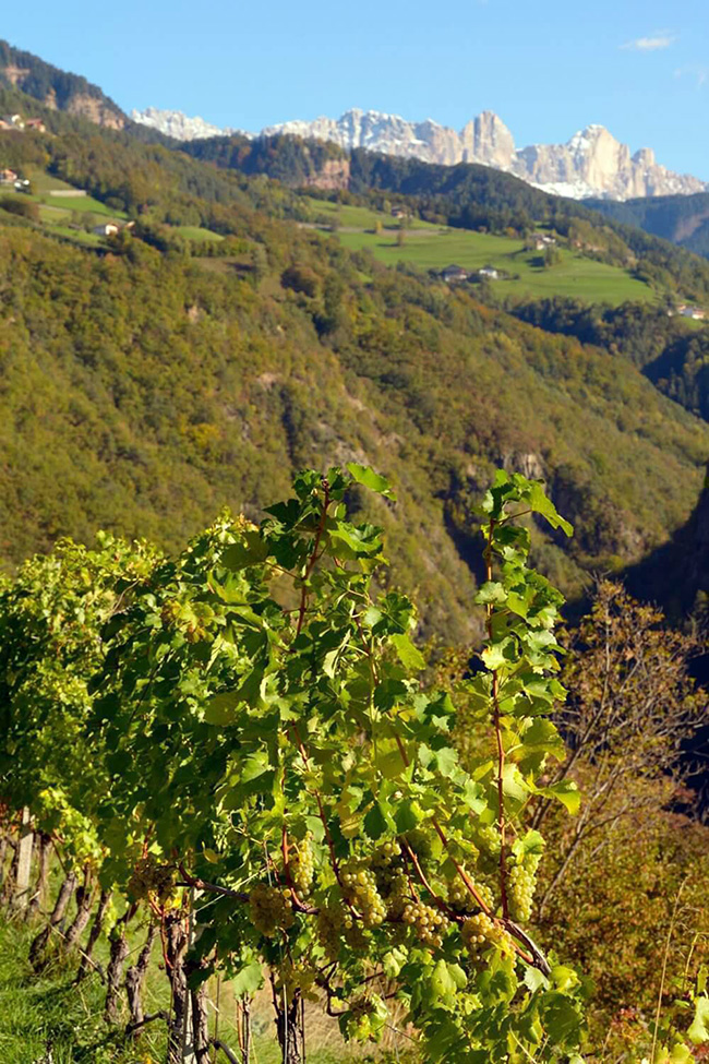 (c) Südtirol Tourismus